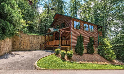 Gatlinburg Single Family Home For Sale: 650 Gatlinburg Falls Way