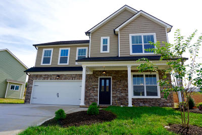 Knoxville Single Family Home For Sale: 9010 Richfield Lane