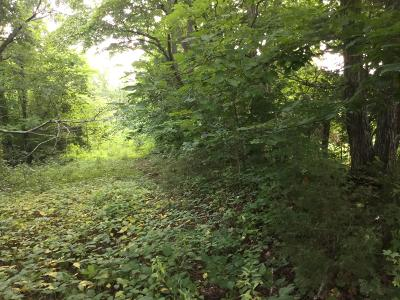 Maynardville TN Residential Lots & Land For Sale: $60,000