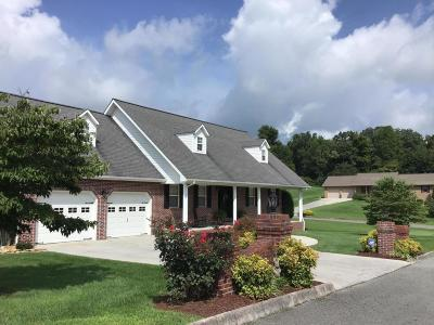 New Tazewell Single Family Home For Sale: 201 El Sara Drive Drive