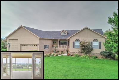 Sevierville Single Family Home For Sale: 3039 Shaconage Tr