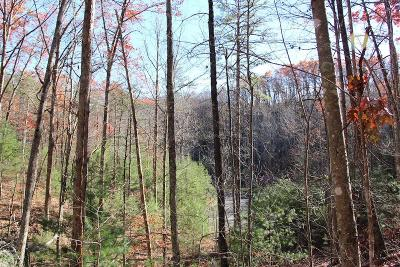 Sevierville Residential Lots & Land For Sale: Lot 29e Cool Water Lane