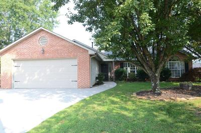 Knoxville Single Family Home For Sale: 5800 Shelley Drive