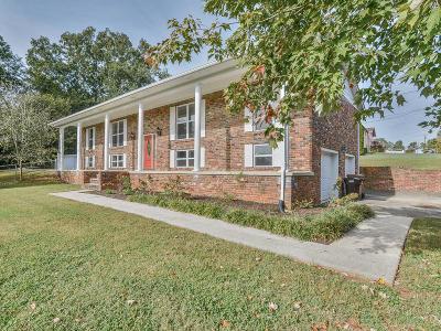 Lenoir City Single Family Home For Sale: 163 Cedar Circle