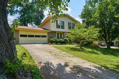Knoxville Single Family Home For Sale: 5436 Lance Drive