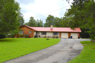 Caryville Single Family Home For Sale: 343 Park Rd