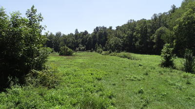 New Tazewell TN Residential Lots & Land For Sale: $249,900