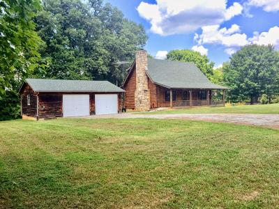 Sevierville Single Family Home For Sale: 1028 Von Cannon Lane