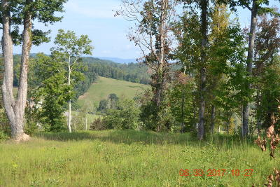 New Tazewell Residential Lots & Land For Sale: 0 Carr Ridge Rd