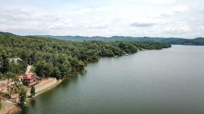Hawkins County Residential Lots & Land For Sale: Channel Point Drive