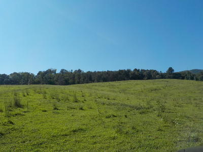 Rutledge Residential Lots & Land For Sale: Rutledge Pike