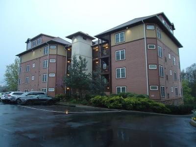 Sevierville Condo/Townhouse For Sale: 527 River Place Way #527