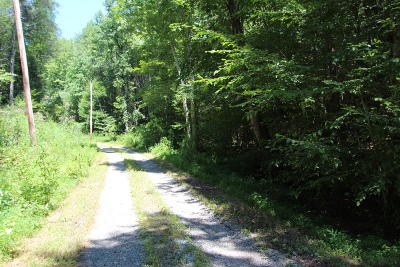 Sevierville Residential Lots & Land For Sale: Parcel 055.00 Pine Hollow Way