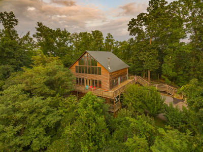 Sevierville Single Family Home For Sale: 880 Indian Gap Rd