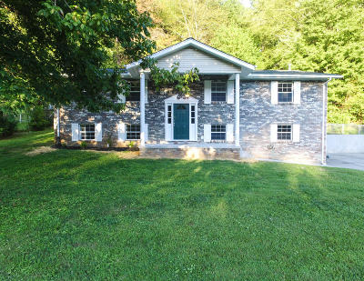 Anderson County Single Family Home For Sale: 421 Ivanhoe Rd