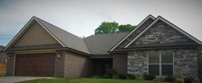 Lenoir City Single Family Home For Sale: 511 Connor Lane