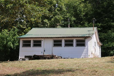 Knoxville Single Family Home For Sale: 7730 Hodges Ferry Rd