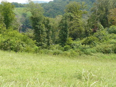 Rutledge Residential Lots & Land For Sale: Lot 8 Lookout Drive