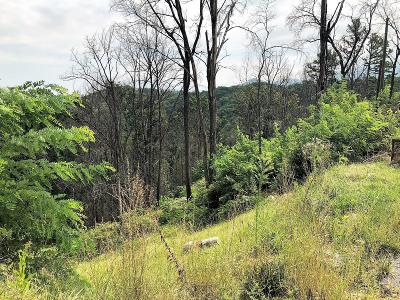 Gatlinburg Residential Lots & Land For Sale: 1007 Dixie Court