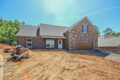 Lenoir City Single Family Home For Sale: 1252 Conner Lane