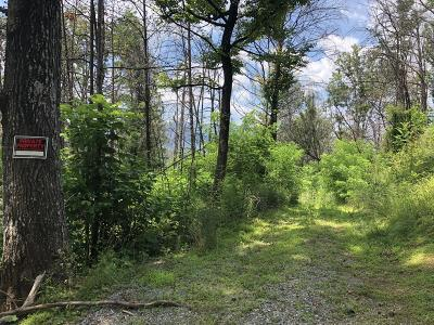 Gatlinburg Residential Lots & Land For Sale: 747 Fox Hollow Rd
