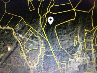 Claiborne County Residential Lots & Land For Sale: Teague Mountain Rd
