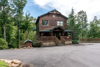 Sevierville Single Family Home For Sale: 4455 Park Boundary Way