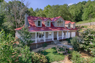 Blount County Single Family Home For Sale: 566 Mountain Shadow Lane