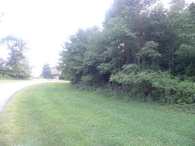 Residential Lots & Land For Sale: Lot 194 East Shore Drive