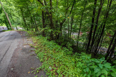 Gatlinburg Residential Lots & Land For Sale: 0011 Stans Rd