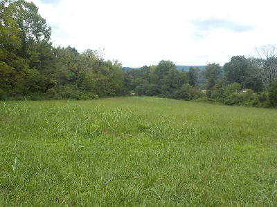 Rutledge Residential Lots & Land For Sale: 00 Cherry Street