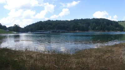 Clearwater Cove, Clearwater Cove At Norris Lake, Clearwater Cove On Norris Lake Residential Lots & Land For Sale: 549 Hickory Way