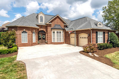 Knoxville Single Family Home For Sale: 4505 Mount Mabry Lane