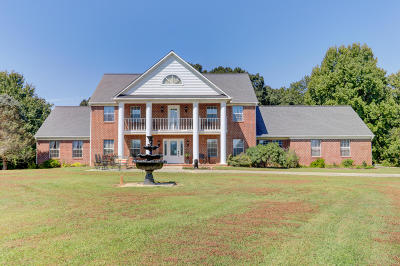 Blount County Single Family Home For Sale: 540 Temple Rd