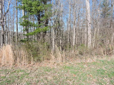 Norris Residential Lots & Land For Sale: Hickory Tr