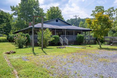 Gatlinburg Single Family Home For Sale: 739 Glades Rd