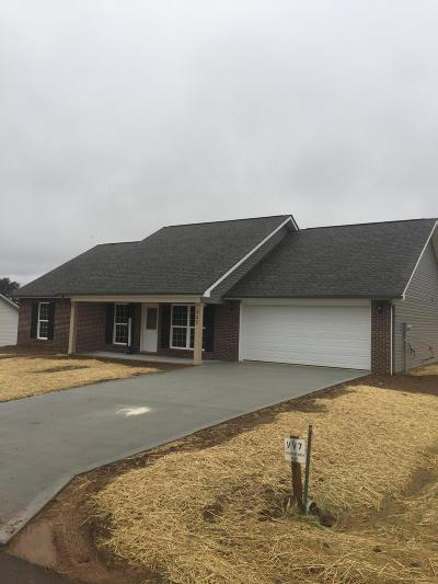 Maryville Single Family Home For Sale: 522 Valley Vista Way