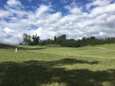 Lenoir City Residential Lots & Land For Sale: 893 Gallery Court