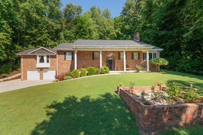 Oliver Springs Single Family Home For Sale: 741 Old Hen Valley Rd