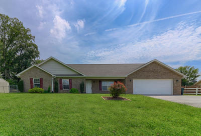 Maryville Single Family Home For Sale: 4252 Pea Ridge Rd