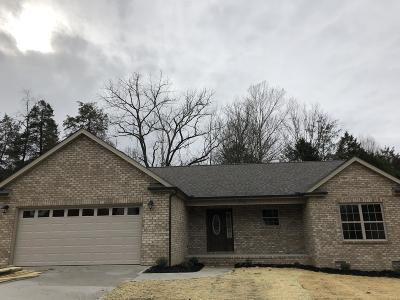 Maynardville Single Family Home For Sale: 200 Timber Creek Rd