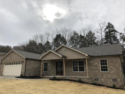 Maynardville Single Family Home For Sale: 210 Timber Creek Rd