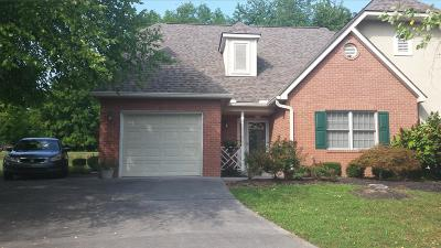 Sevierville Condo/Townhouse For Sale: 393 Paine Lake Dr