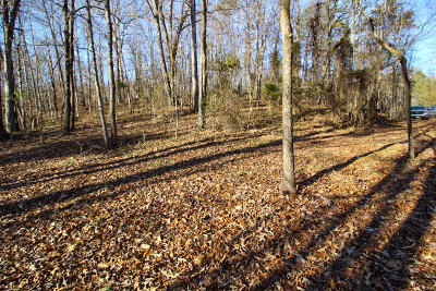 Union County Residential Lots & Land For Sale: Hankins Hollow Rd