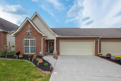 Knoxville Condo/Townhouse For Sale: 6149 East McMillan Creek Drive