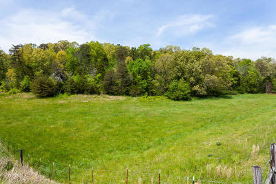 Blaine Residential Lots & Land For Sale: Rutledge Pike