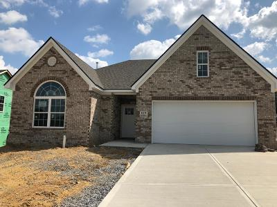 Maryville Single Family Home For Sale: 618 Branchwood Lane