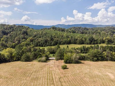 Blaine Residential Lots & Land For Sale: Smith Hollow 086 006.01 Rd