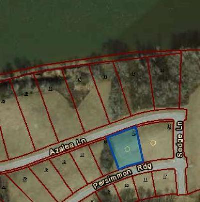 Residential Lots & Land For Sale: 4223 Persimmon