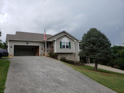 Single Family Home For Sale: 411 Little Cove Drive